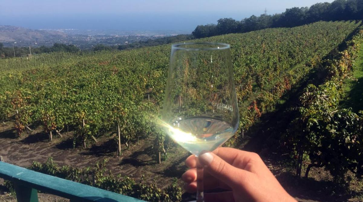 Etna Wine Experience